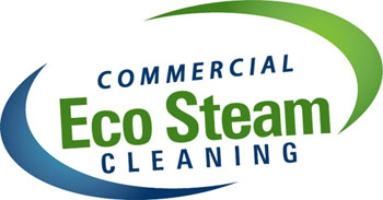 eco steam cleaning